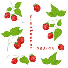 Isolated strawberry elements for design