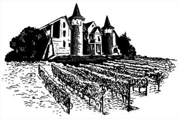 Castle - vineyard