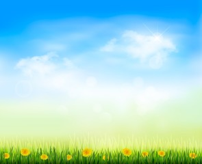 Summer gaze background with blue sky and a field of dandelions.