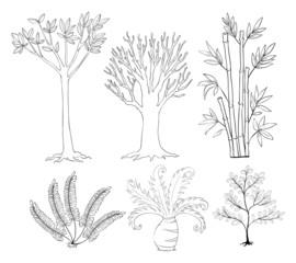 Doodle set of plants