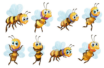 Eight bees in different positions