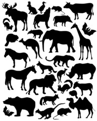 silhouette mammals