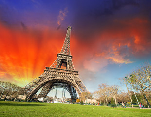 Fototapete - Paris, France. Wonderful view of Tour Eiffel with gardens and co