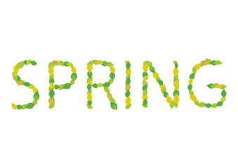 word spring made of green leaves, vector background
