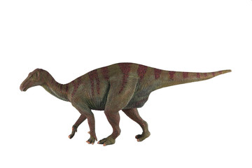 Iguanodon dinosaur against white background