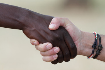 Two men shaking hands on a deal