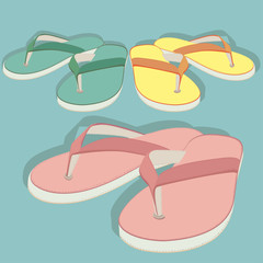 Colored shales and slippers. vector illustration