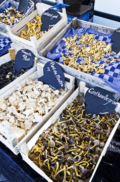Mushrooms in crates on blue cloth on a marketplace