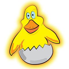 Small yellow chicken
