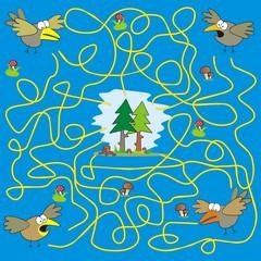 maze - birds