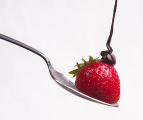 Chocolate hits the Raw Fruit Food Berry on a Spoon