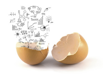 A brown color broken chicken egg with business concept out