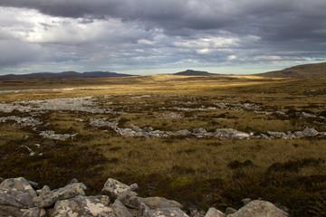 Falkland Islands Landscape