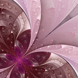 Beautiful fractal flower in vinous and purple.