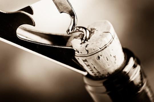 vino rosso pregiato - aged fine wine