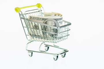 American one hundred dollar bills in shopping cart