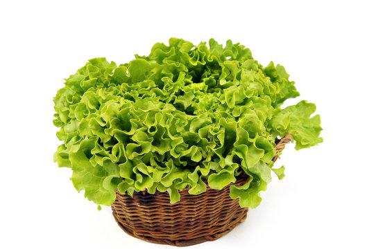 salade laitue batavia vu de face panier osier fond blanc