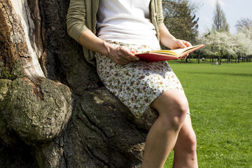 Young woman sitting in tree reading
