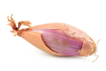 Shallot  onions on a white background