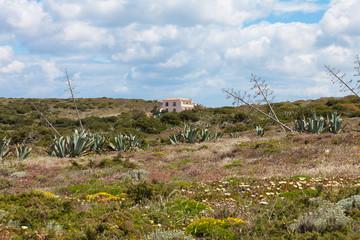Portugal - Algarve - Pontal Carrapateira