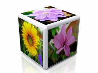 cube and flowers pictures
