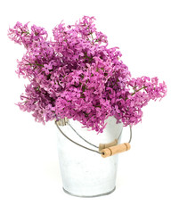 Bunch of lilac in bucket