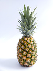 Ananas Freisteller