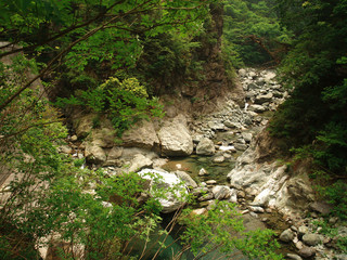 River in the mountains in Japan