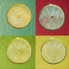 Slices of lime with drop on color background