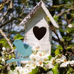 Vogelhaus mit Herz und Vogel