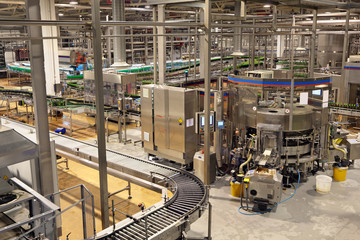 Conveyor. Food industry, interior of brewery