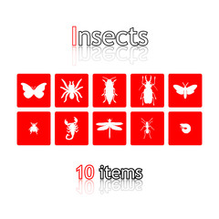 Icon collection of insects