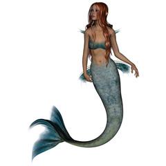 Aluminium Prints Mermaid Mermaid