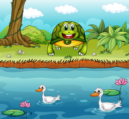 A turtle beside the river with ducks