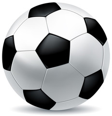 leather soccer ball