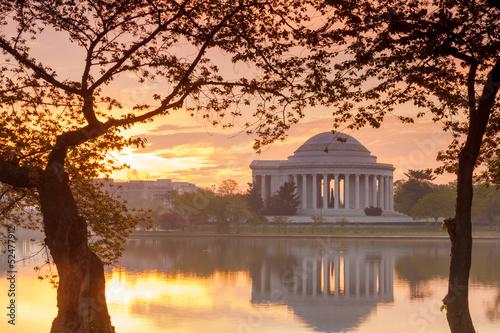 Wall mural Jefferson Memorial at dawn by Tidal Basin, DC