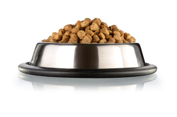 Cats and dogs food