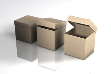 Kiste Karton 3er