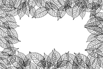 leaves frame black out line background