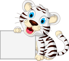 cute baby white tiger posing with blank sign