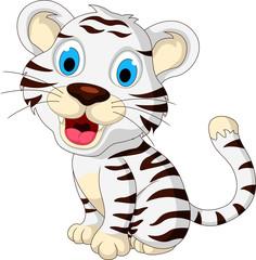 cute baby white tiger posing