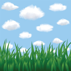 Green grass, blue sky and clouds