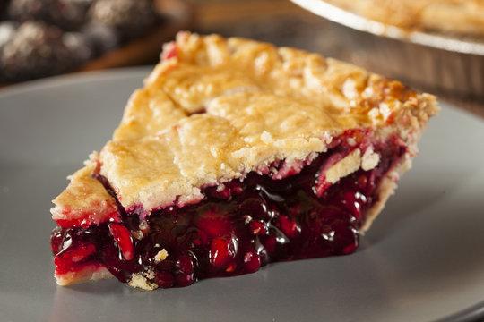 Homemade Organic Berry Pie