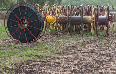 Hose spools on a green lawn