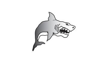 squalo 3