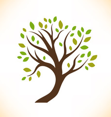 Vector isolated tree. Decorative stylized plant
