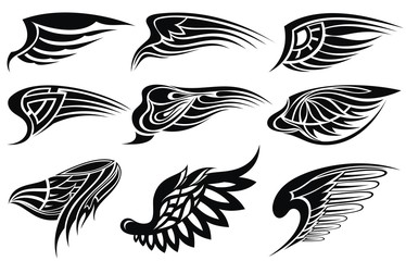 Set sketches of wings