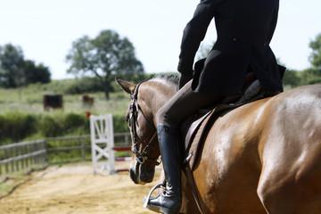 Foto op Aluminium Paardrijden Equitation
