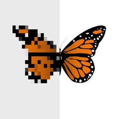 Wall Murals Pixel Vector Pixel Art Butterfly