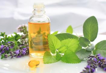 Wall Mural - Fresh herbs and oil